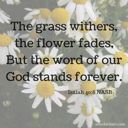 The grass withers, the flower fades, but the word of our God stands forever.  -Isaiah 40:8 NASB